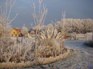 Winter in het Europa Ayurveda Centrum, Witharen