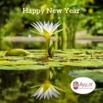 Wij wensen iedereen Geluk, Gezondheid en veel Wijsheid toe.