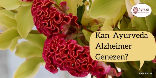 Kan Ayurveda Alzheimer Genezen?