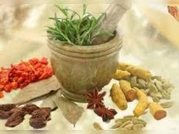 Ayurvedisch geneesmiddel goedgekeurd voor klinisch onderzoek.