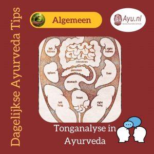 Tonganalyse in Ayurveda